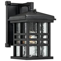 Westinghouse 6204500 Caliste 1 Light Outdoor Wall Lantern wi