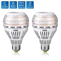 200-150 Watt Equivalent A21 22W LED Light Bulbs-3000 lumens