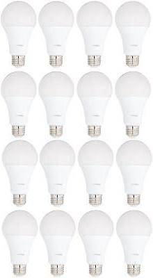 AmazonBasics 100 Watt Equivalent, Daylight, Non-Dimmable, A2