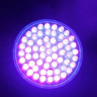 110V Ultra Bright UV Ultraviolet Color Purple Lamp