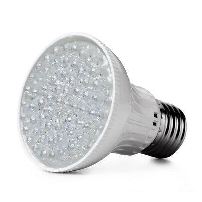 110V New Ultra Bright Color Purple Light Lamp