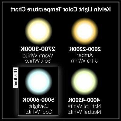 LED A15 Refrigerator 5W 40W Equivalent Bulbs 5000K
