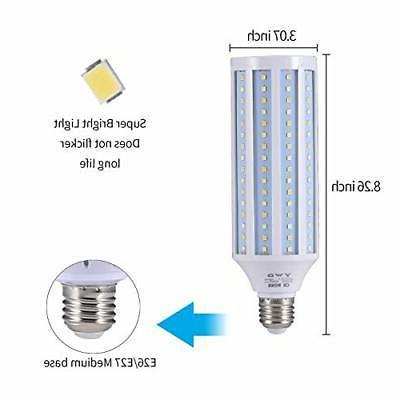 300 Watt Light Bulb E26/E27 Basement