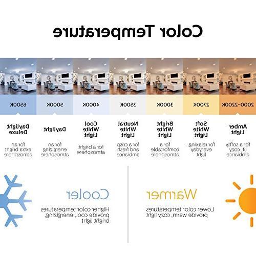Philips 420091 823031 Light 13W Twister 6500K, Watt Equivalent
