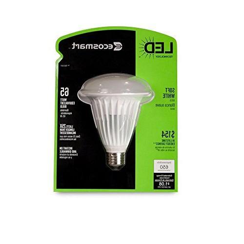 White LED Flood Bulb