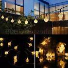 Solar Power 30LED String Light Bulb Christmas Garden Path Ya
